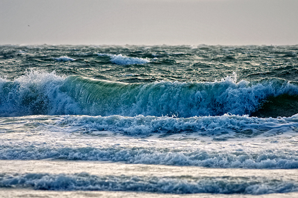 Coastal waters have been affected by attempts to reduce eutrophication. Photograph: Michiel Jelijs/CC BY-2.0