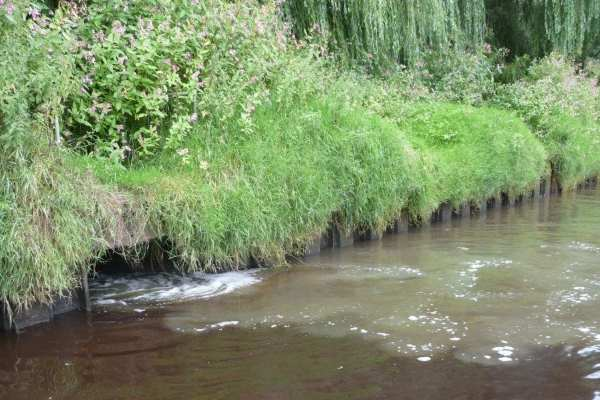 Yorkshire Water discharged sewage illegally into the River Ouse near York. Photograph: Environment Agency