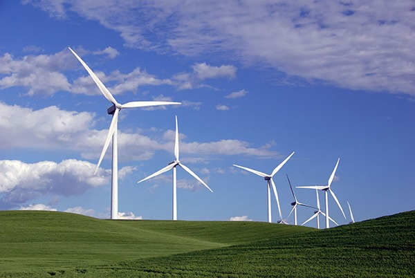 Wind farm developers may need to plan projects carefully. Photograph: Terrance Emerson/123RF