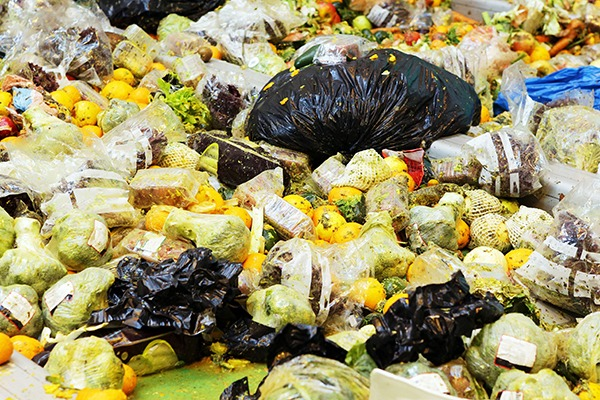 Food waste contributes to about 8% of global greenhouse gas emissions. Photograph: Cylonphoto/123RF