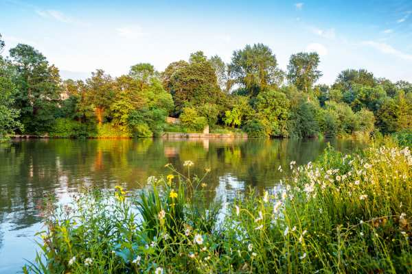 British rivers, such as the Thames, are most threatened by metal pollution. Photograph: Andrei Nekrassov / 123RF