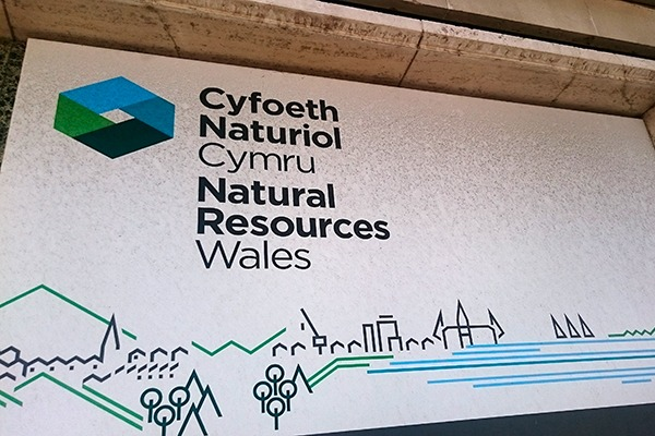 Natural Resources Wales has now been operating for three years. Photograph: Isabella Kaminski