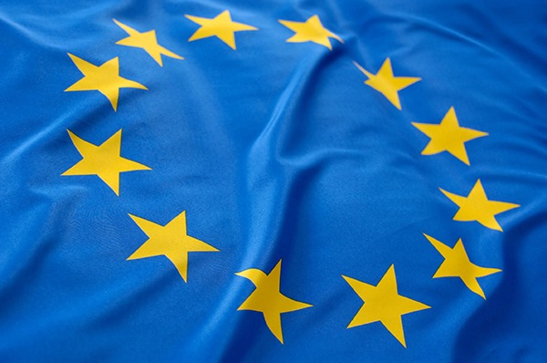 Three quarters of environmental professionals will vote to remain a member of the EU. Photograph: Pixpack/123RF