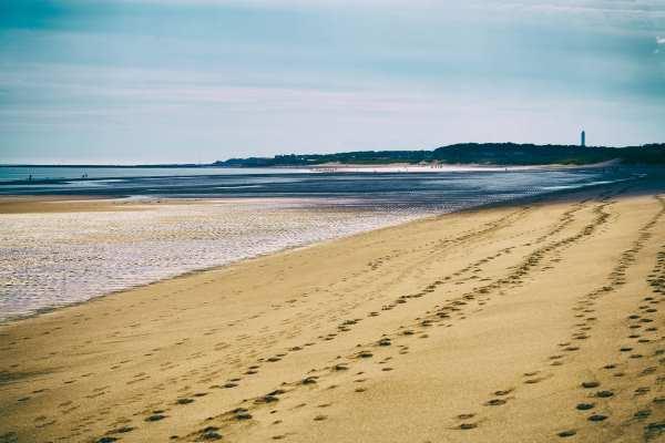 The beach at Druridge Bay. Photograph: Duncan Andison / 123RF