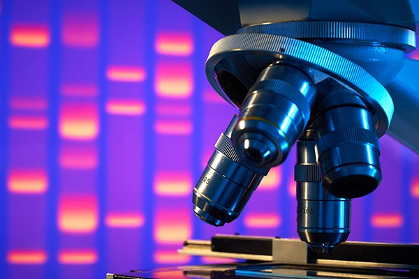 The regulatory use of DNA evidence is growing. Photograph: 18percentgrey/123RF