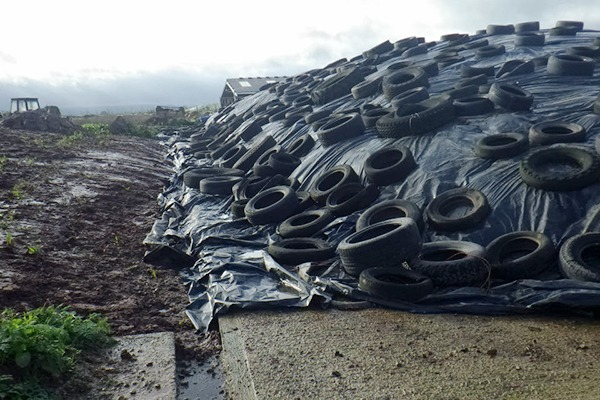 The clamp made from tarpaulin weighed down by heavy tyres had been built on the farm without Environment Agency approval. Photograph: Environment Agency