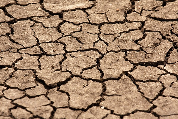 In recent year some areas of the UK have received less rainfall than the Sahara desert, according to Water UK. Photograph: Harald Van Der Winden/123RF