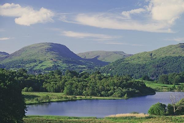 Woodland and Blelham Tarn, Cumbria.