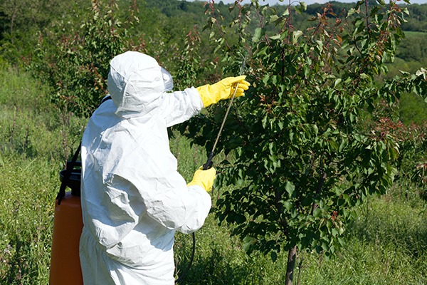 Establishing a definition for endocrine disruptors will affect the regulation of pesticides. Photograph: Macor/123RF