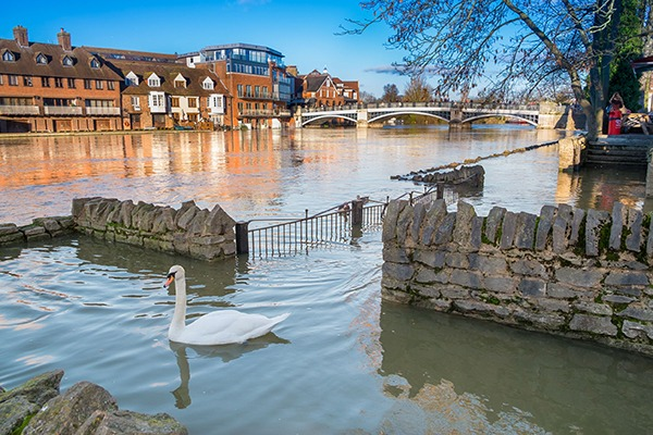 A new dedicated flood and river authority should be created, say MPs. Photograph: Lucie Lang/123RF