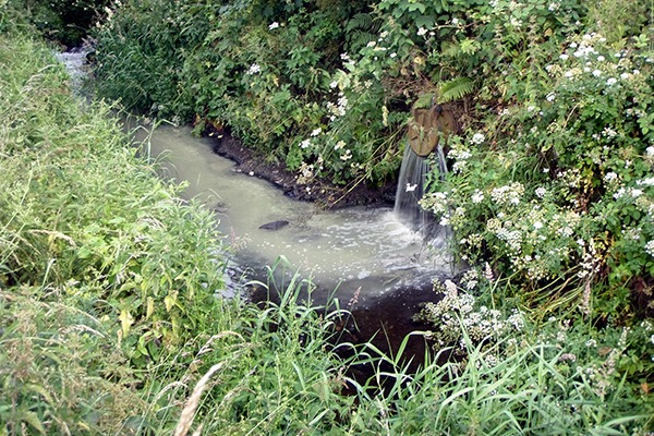 Sewage from the treatment works has entered the river many times. Photograph: DAERA