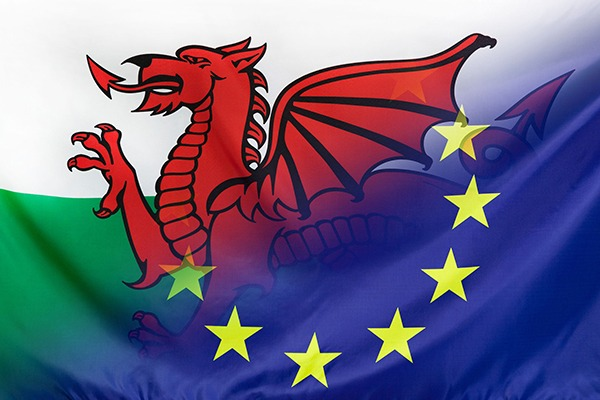 The consultation suggests Wales could be open to diverging further from the rest of the UK after leaving Brexit. Photograph: Sehenswerk/123RF