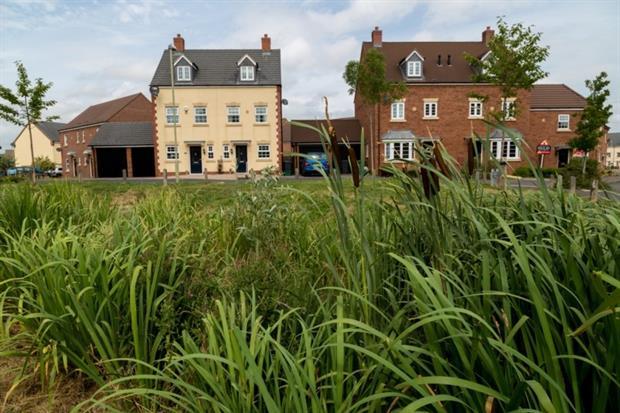 Sustainable drainage alongside new houses. Photo: WWT