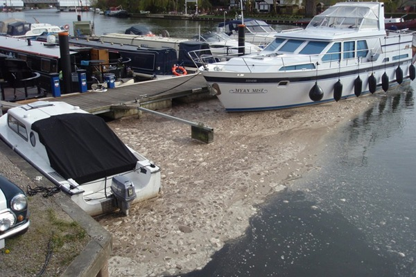 Thames Water discharged untreated sewage into various sites in the River Thames between 2012 and 2014. Photograph: Environment Agency