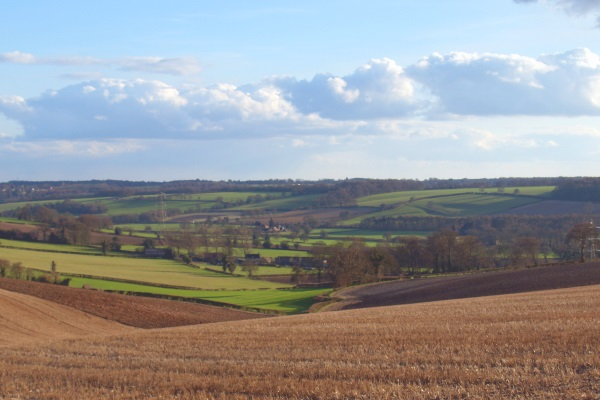 The HS2 route will cut through the scenic Chilterns. Photograph: djim CC BY 2.0