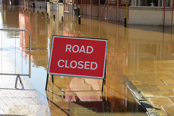 A National Infrastructure Resilience Council could be set up to manage interdependency risks. Photograph: Ronfromyork/123RF