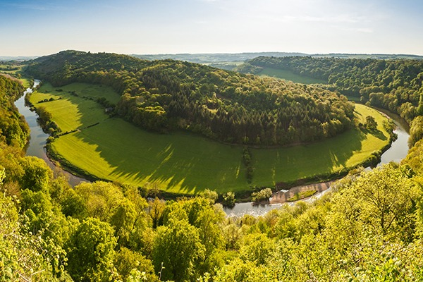 Trees along the meandering River Wye, the fifth-longest river in the UK. Photograph: Matthew Dixon/123RF