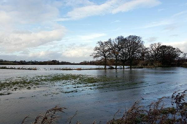 Altered floodplains lead to higher flood risk. Photograph: 123RF