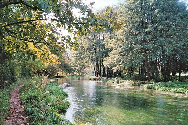 The river Itchen. Photograph: Leimenide/Flickr