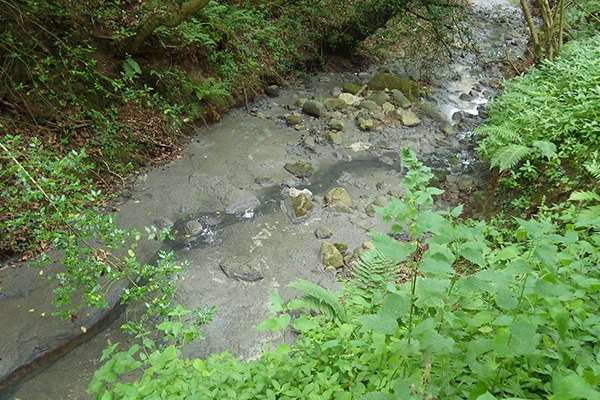 The company was also ordered to pay £28,078 in legal costs. Photograph: Environment Agency