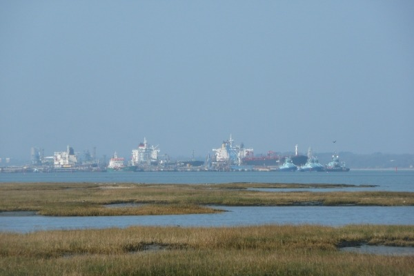 Protected salt marsh sits side-by-side with industry and shipping in the Solent. Photograph: Chris T Cooper