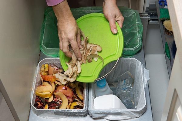 Each year households generate 7.3 million tonnes of food waste. Photograph: kaliantye/123RF