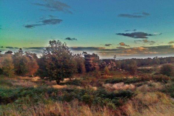 Brimham Moor in North Yorkshire. Photograph: Stuart Ketley/123RF