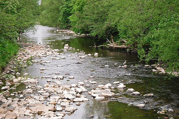 The River Caldew near Buckabank. Photograph: Rose and Trev Clough/Geograph