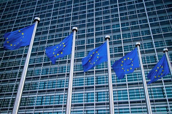 EU flags outside European Commission building. Photograph: Iaroslav Danylchenko/123RF
