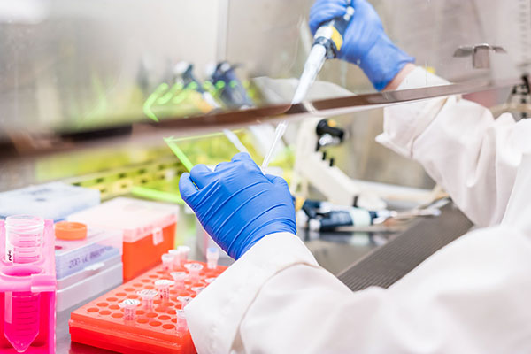 Scientist pipetting substance into test tubes. Photograph: Sinitar/123RF