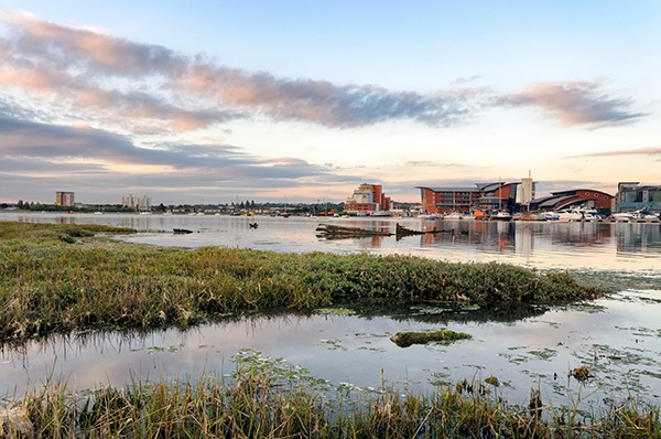 Salt marshes at Poole, Dorset. Photograph: Helen Hotson/123RF