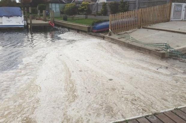In 2017, Thames Water was fined £20m for pollution offences. Photograph: Environment Agency