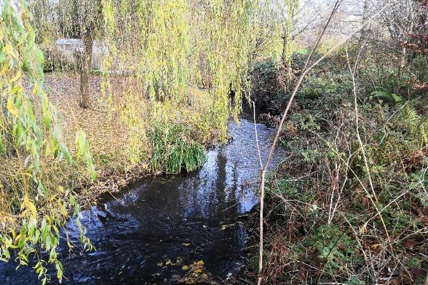Fuerst Day Lawson agreed an EU after it polluted Stoke's Longton Brook. Photograph: EA