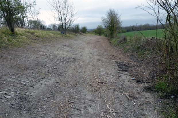 The Roadside Nature Reserve after the drainage works (images copyright Dave Watson, Kent Wildlife Trust)