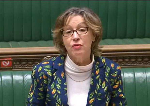 Environment minister Rebecca Pow defended the bill in the Commons yesterday. Photograph: Parliament