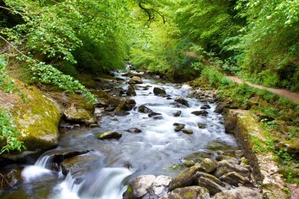 The River Lyn in Devon