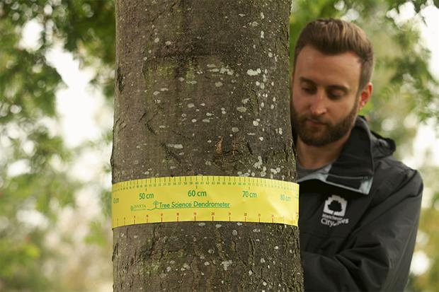 The Greater Manchester Combined Authority carried out one of the largest tree surveys outside the US in 2018. Photograph: City of Trees