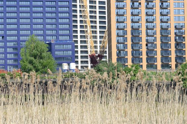 Construction: Developers will soon have to deliver 10% net biodiversity gain