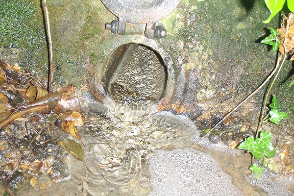 Severn Trent pollution incident