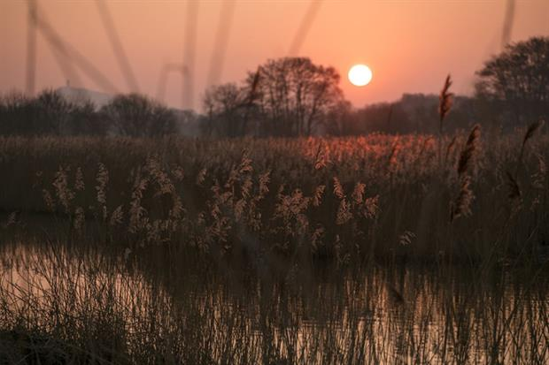 Somerset Levels: Natural England confirmed that the proposal had the potential to add to nutrient loads within the catchment of the Ramsar site (Photo by Matt Cardy/Getty Images)