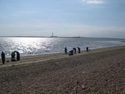 Oil spill, Southampton