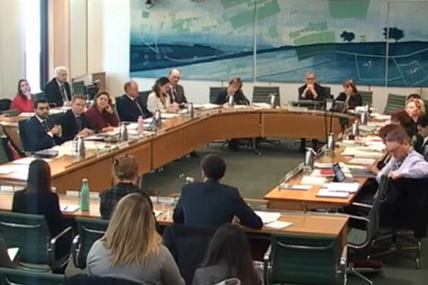 Experts address MPs and DEFRA minister Rebecca Pow during the committee's scrutiny of the Environment Bill (Image: Parliament TV)