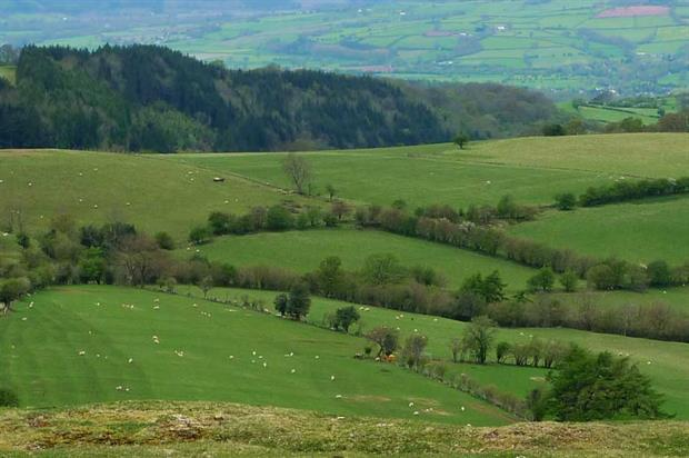 The Welsh countryside (pic: Henry Burrows, Flickr, CC BY-SA 2.0)
