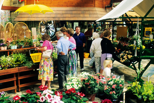 Garden centres: rushing to stock up after initially showing caution - image: © Holmes Garden Photos/Alamy