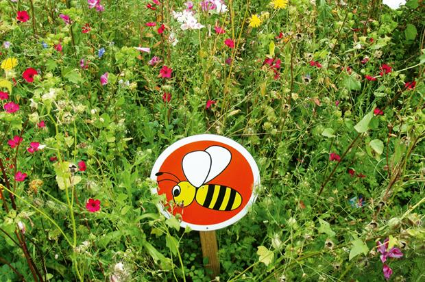 Pollinator policy:cost trimming
