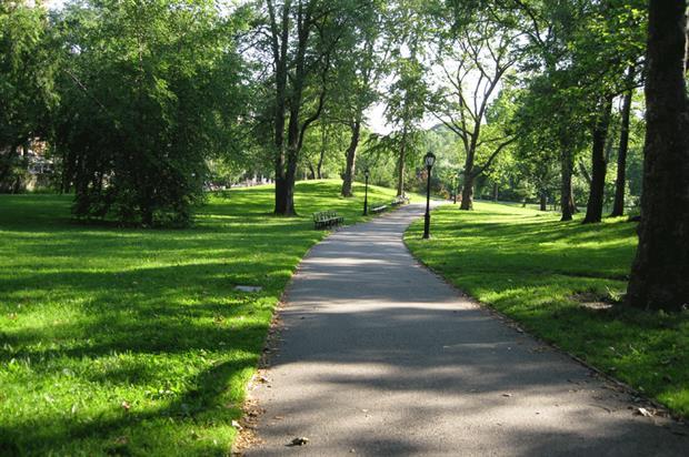Parks: lack of optimism (credit: Morgue)