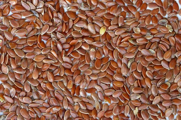 Seeds: Defra urged to educate public on the danger of buying online