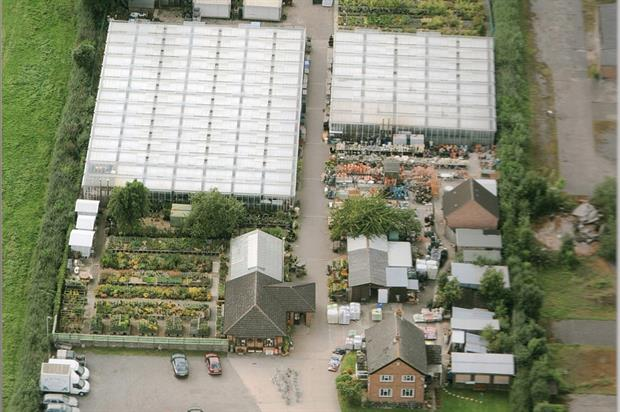 Young's Nurseries: Blisworth site to be sold following firm's closure