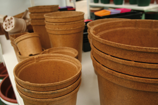 Pots and containers- image: HW