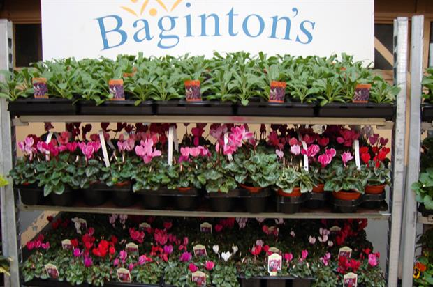 Baginton Nurseries: facility in Stoneleigh, Warwickshire, will act as venue for new Pot & Bedding Centre